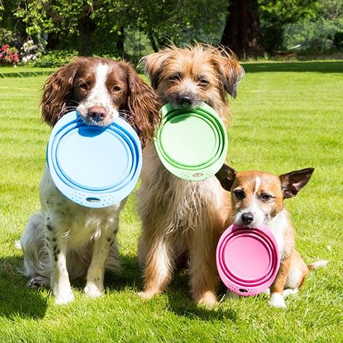 Beco Pets Reisenapf drei größen drei hunde