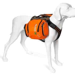 EQ Dog Flex Pack II