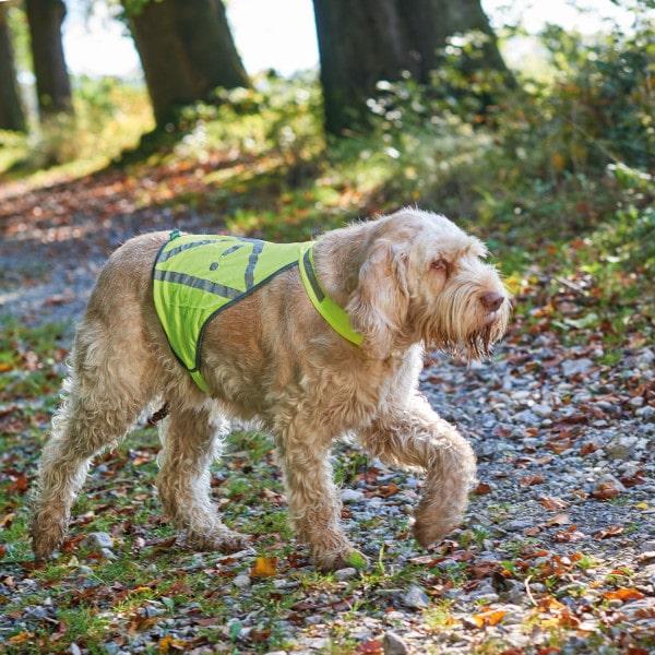 Hunter Warnweste neon gelb am Hund