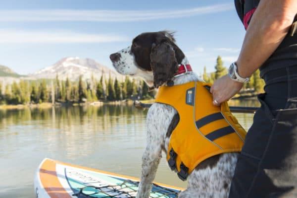 Ruffwear Float Coat wave orange am Hund