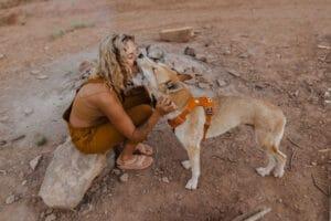 Ruffwear Front Range Harness 2020 campfire orange am Hund