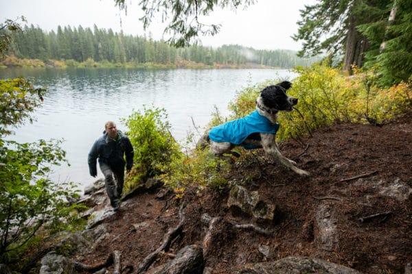 Ruffwear Sun Shower Rain Jacket blue dusk am Hund