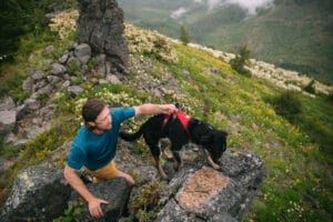 Ruffwear Flagline Harness red rock beim Heben