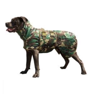 Siccaro Hundetrockenmantel Spirit am Hund