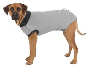 Trixie Schutzbody am Hund